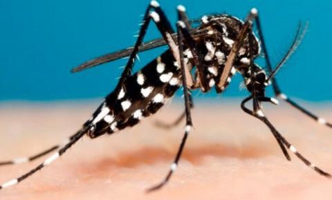 Dados atualizados em caso de Dengue em Três Passos