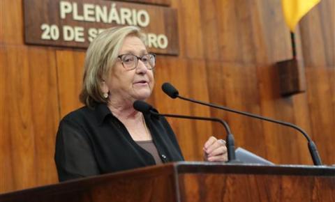 Governo do RS adota proposição sugerida pela Deputada Estadual Zilá Breitenbach visando incentivar o investimento em energias renováveis