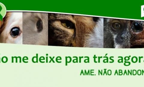 CRMV-RS lança campanha de conscientização contra o abandono de animais.