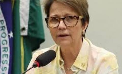 Não vai faltar arroz, feijão e carne na mesa do brasileiro, diz Ministra Tereza Cristina