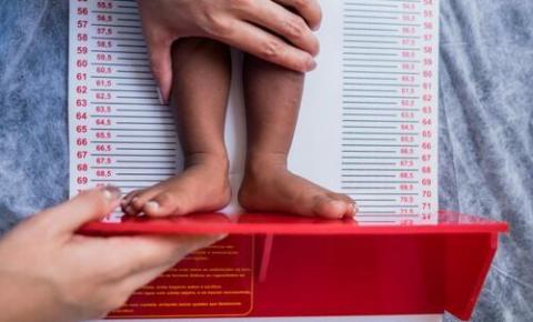Alimentação nos primeiros anos de vida é decisiva para a formação de hábitos alimentares, crescimento e desenvolvimento da criança