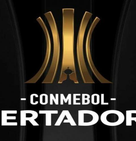 Dupla Grenal entra em campo pela Libertadores